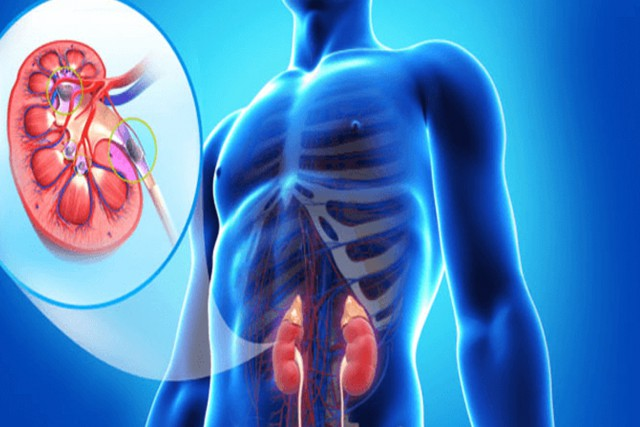 HOW TO KEEP YOUR KIDNEYS SAFE AND STRONG