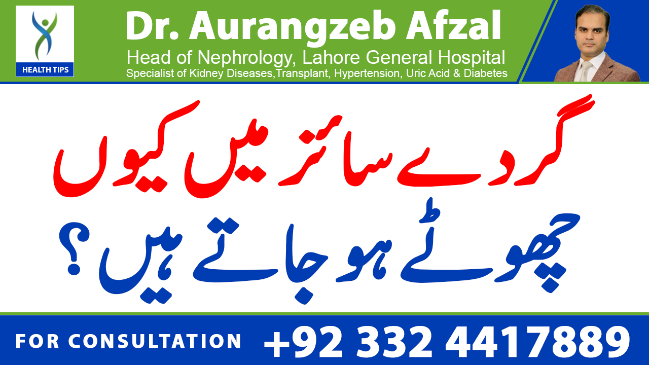 Why do kidneys get small in Size/Why do kidneys shrink | KIDNEY FAILURE Series | (Urdu/Hindi)