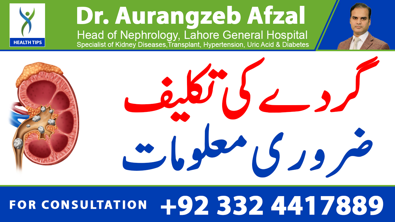 How to know if you are having Kidney pain? (urdu/hindi)