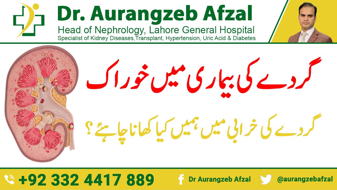 Diet in Kidney Disease - What should we eat in Kidney Failure in [Urdu/Hindi]