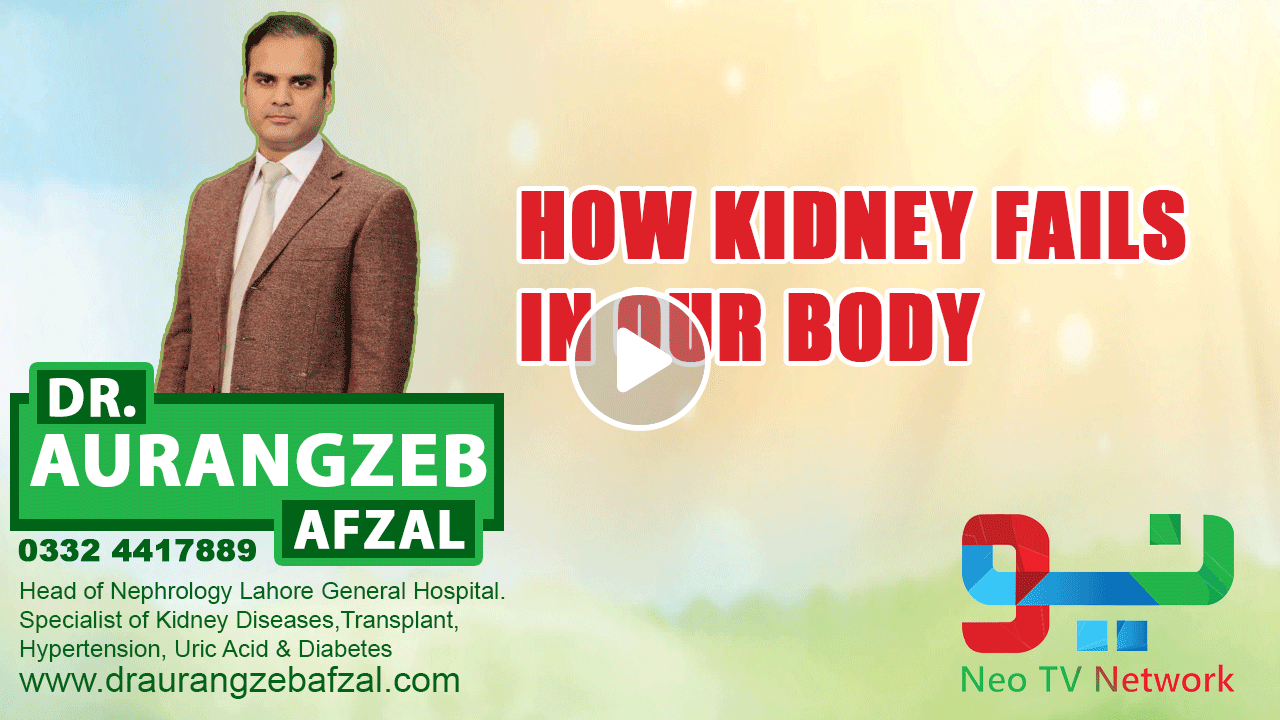 How Kidney Fails In Our Body | Neo Pakistan | Neo News