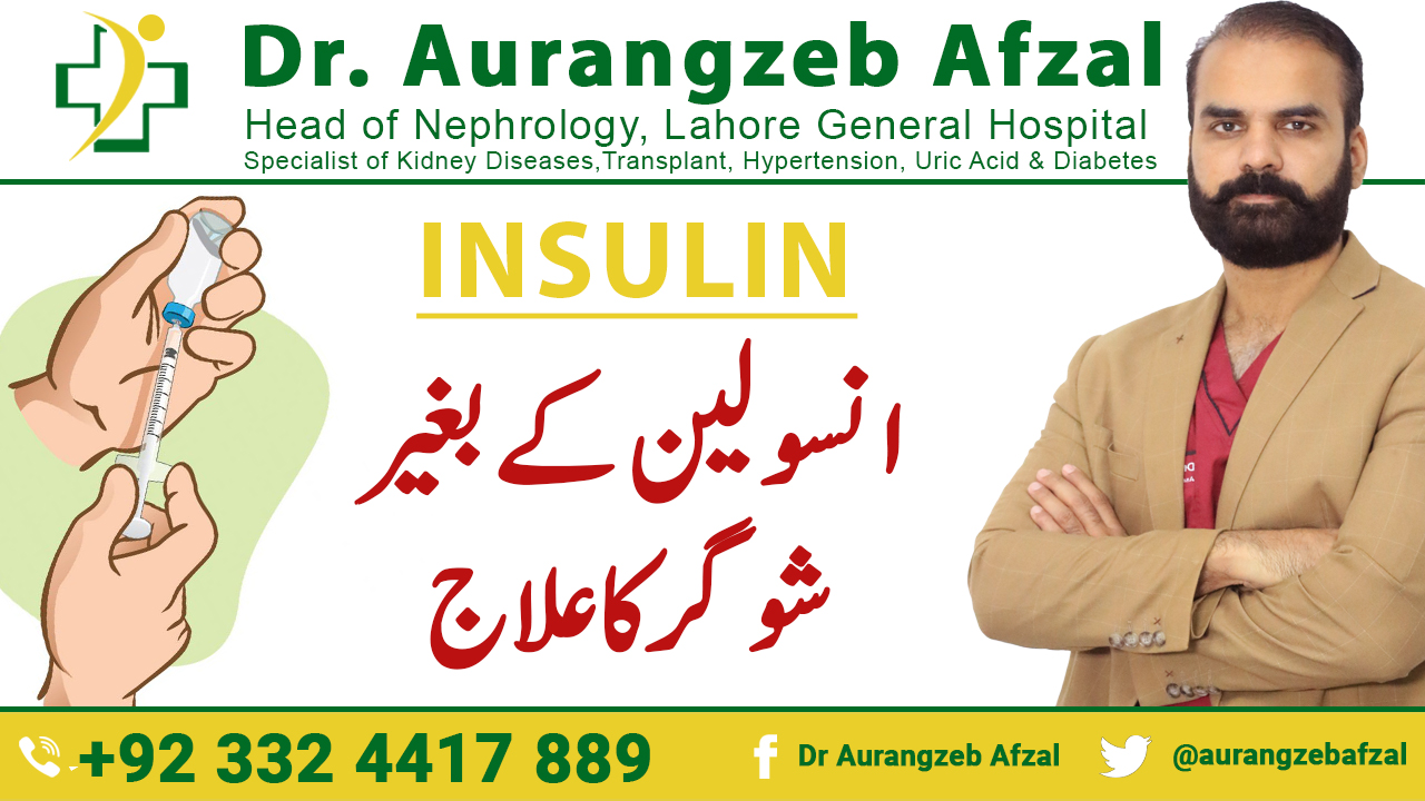 Insulin   Treatment of Diabetes without Insulin   Treatment of Sugar without Insulin [Urdu/Hindi]