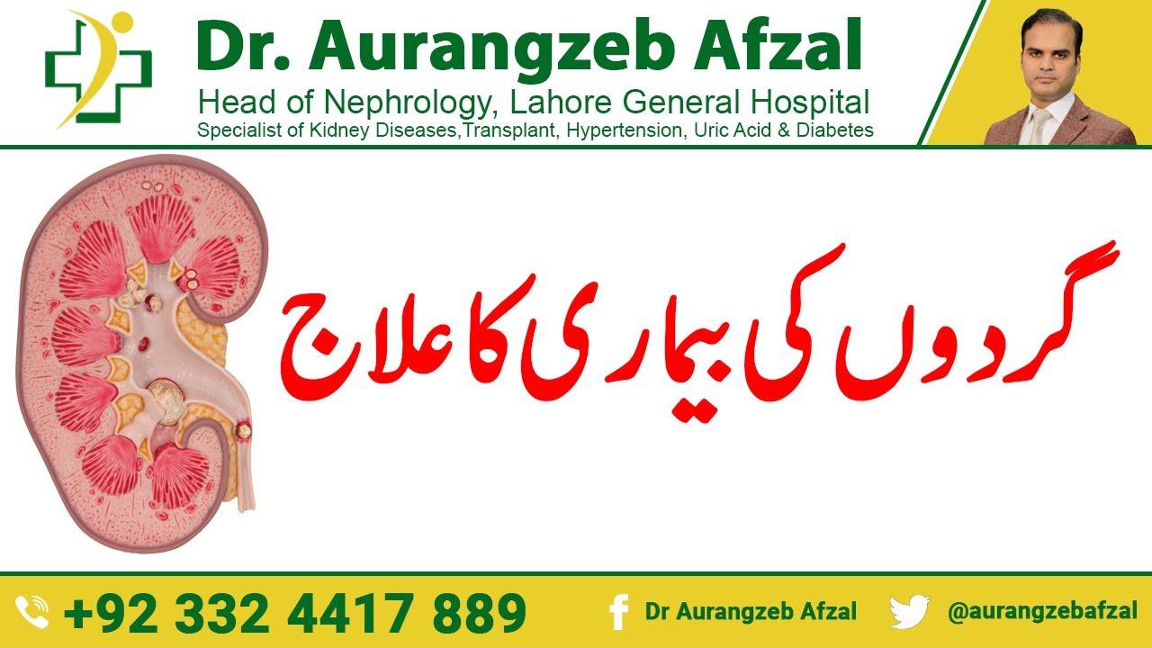 Treatment of Kidney disease - Failure caused by Diabetes in Urdu/Hindi