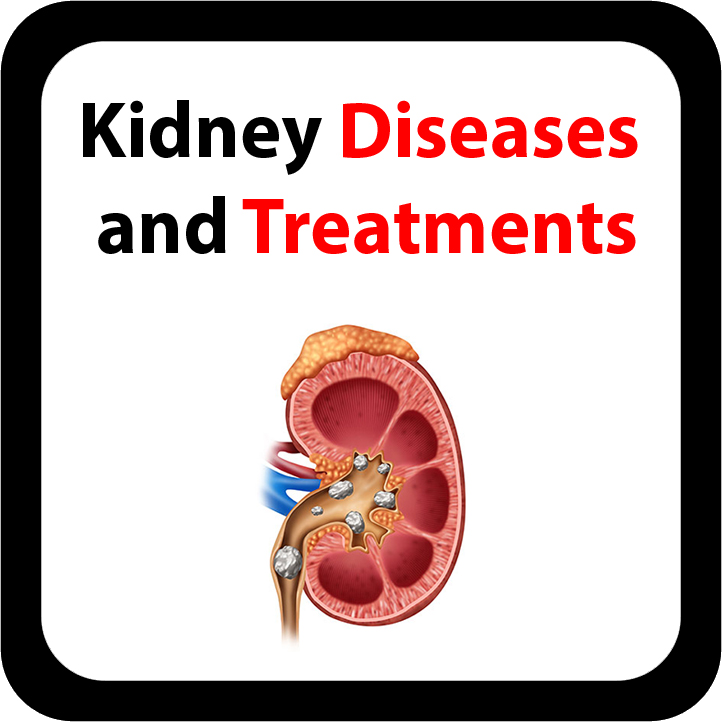 Kidney Diseases and Treatments